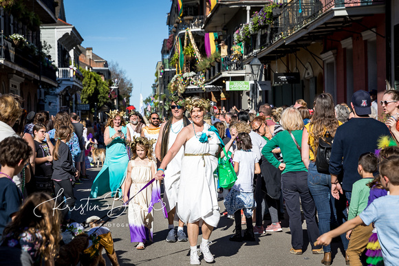 Family Photos in New Orleans during Mardi Gras Parades plus a family with a 6 week old newborn baby.