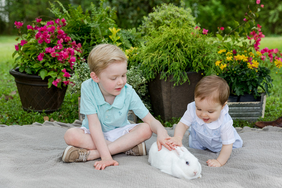 Spring Mini Sessions for children and families outside with green grass, a blanket, flowering plants and a darling white bunny with blue eyes