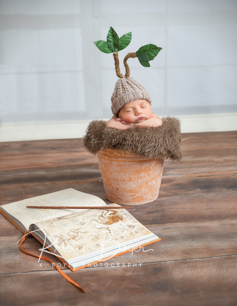 newborn baby girl featured in a variety of cute pinterest inspired photo ideas in my brookhaven studio. A flowerpot, a cloud, softball themed photos and so much more