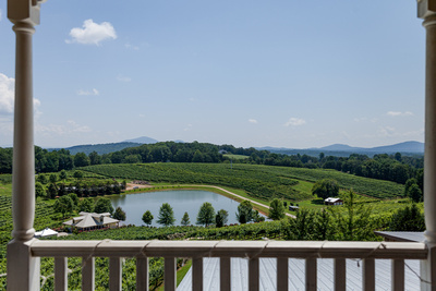 Photos of the North Georgia Vineyard's and Wineries