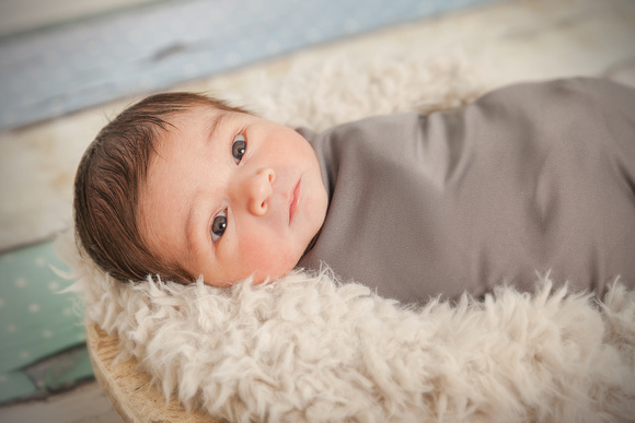 Indoor Brookhaven Studio Newborn Photo Shoot for a baby boy with Grandma & Grandpa and mom and dad