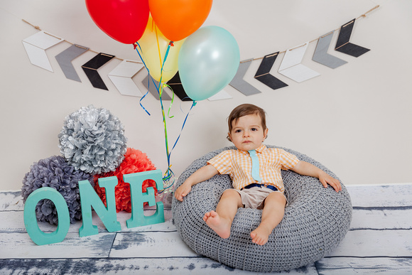 Outdoor and Studio Family Photos for Birthday Boys First Birthday Cake Smash